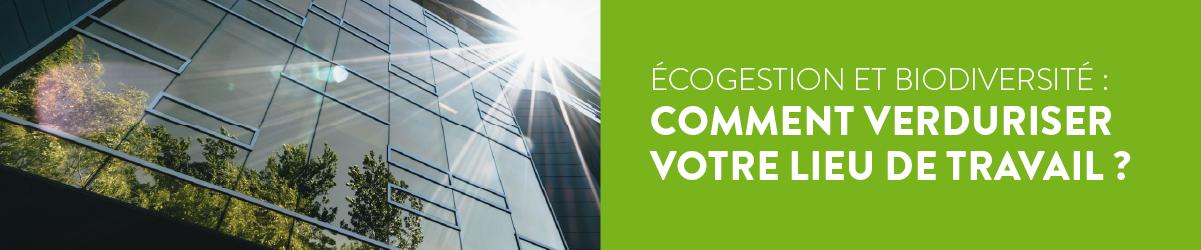 Ecogestion et biodiversité : comment verduriser votre lieu de travail ?